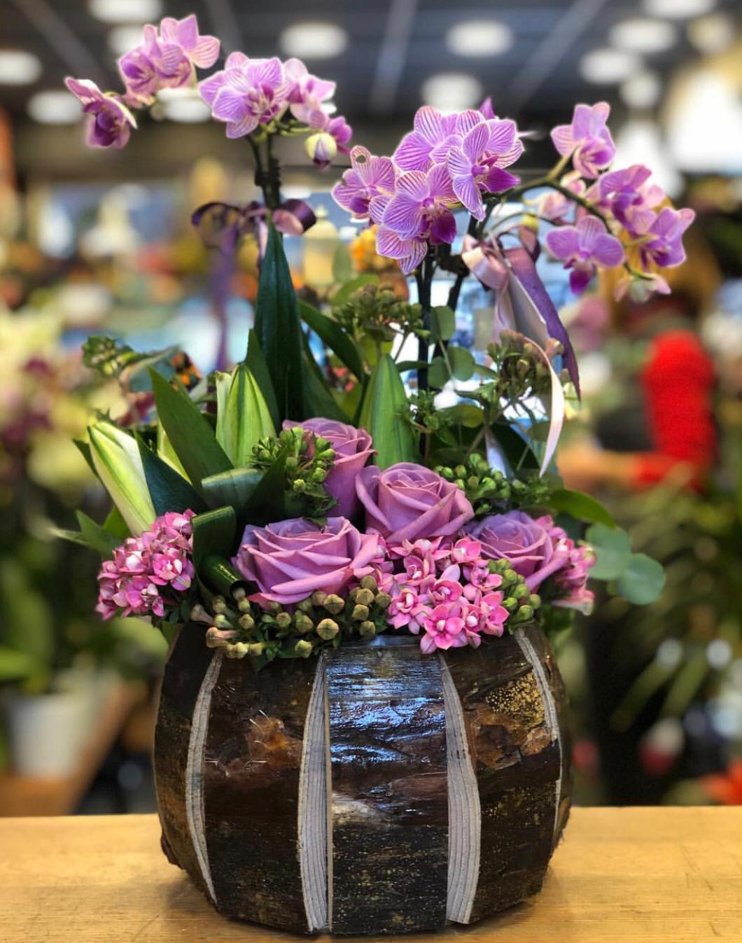 Seramik Saksıda Mini Orkide ve Güller